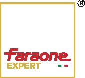 Logo_Expert_Faraone